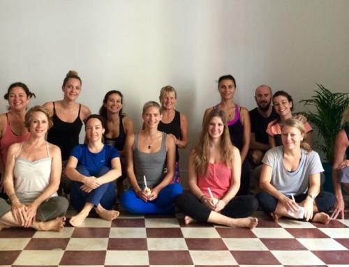 Meet our Newest Neighbors – Casco Yoga!