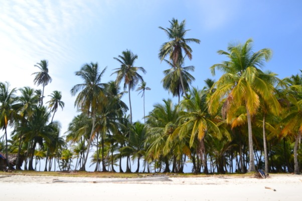 San Blas island paradise, one of many reasons to explore Panama and surely the highlight of a Panama visit