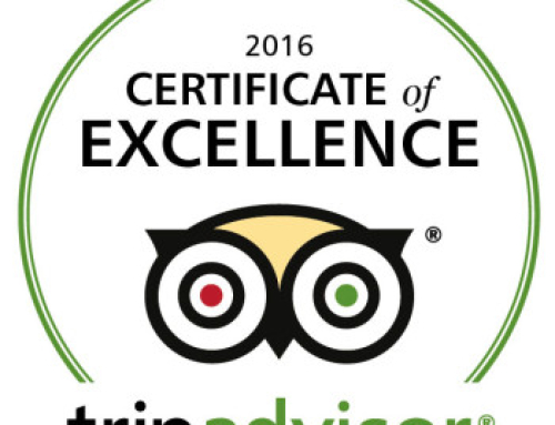 TripAdvisor Awards Casco Antiguo Spanish School with 2016 Certificate of Excellence!